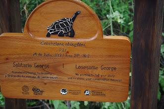 Photo: RIP Lonesome George