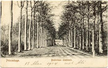 Photo: 1904 Beukenlaan Liesbosch