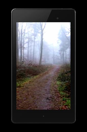 玩免費個人化APP 下載怖い森ビデオLWP app不用錢 硬是要APP