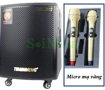 Loa vali kéo Temeisheng Pro 168