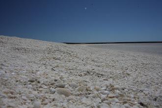 Photo: Shell Beach