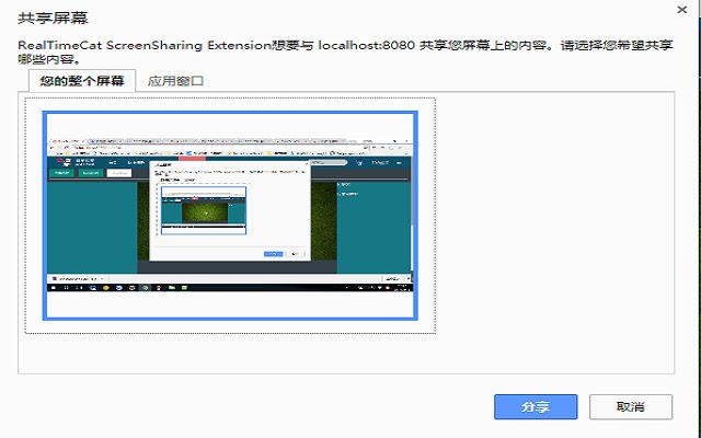 RealTimeCat ScreenSharing Extension
