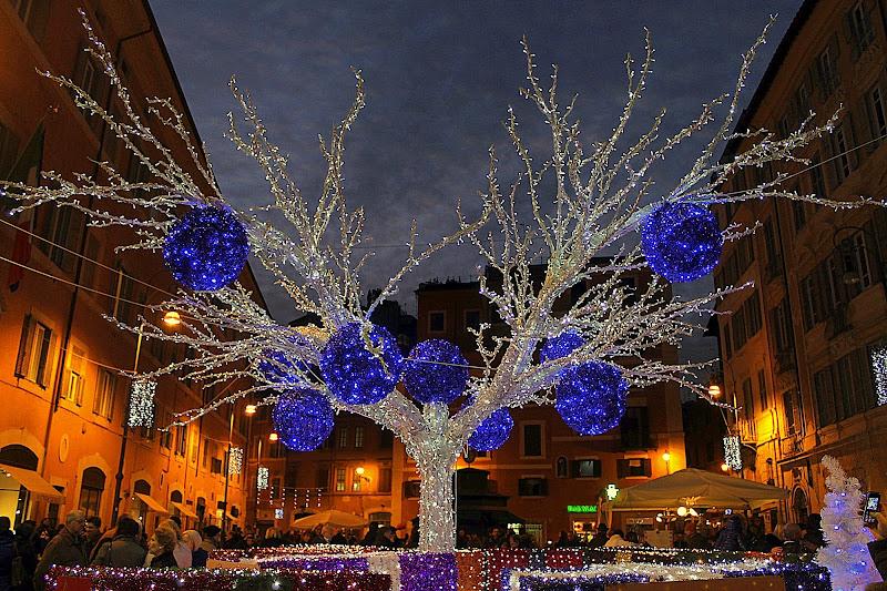 L'albero di cristallo di Franca Graziani