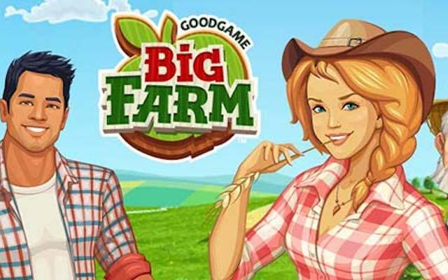 Big Farm Install