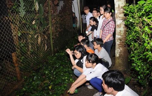 Vườn quốc gia Cúc Phương rộn rã vào hè 5