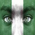 Nigerian Newspapers online icon