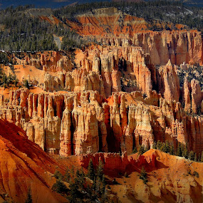 Stunning Bryce by Becky Luschei - Landscapes Mountains & Hills ( rainbow point, vista, breath taking, bryce canyon, stunning,  )