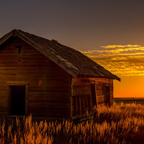 Tales of the prarie by Dan Bartlett - Buildings & Architecture Other Exteriors ( farm, wy, ranch, sunset, weed, wyo, wyoming, house, sunrise, golden,  )