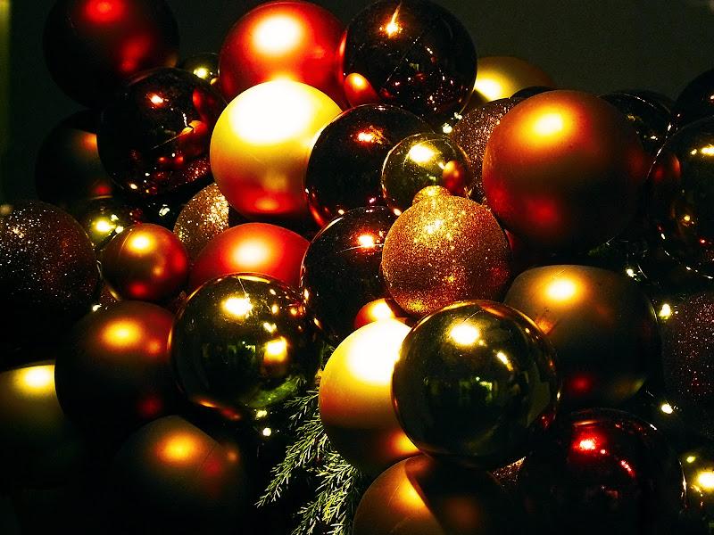 Natale nelle vetrine di Gianni.Saiani  Photos