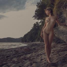 by Dmitry Laudin - Nudes & Boudoir Artistic Nude ( beautiful, light, sunset, nude, girl, body )