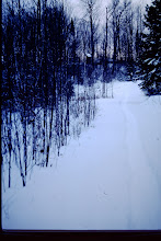 Photo: Winter scenes ('89-'90)