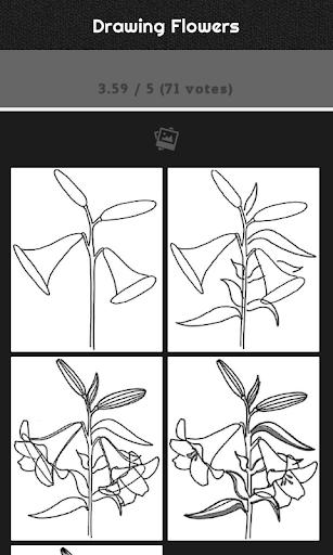 無料娱乐Appの花の描き方|記事Game