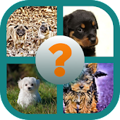 Dog Breed Quiz Android APK Download Free By Melissa1800