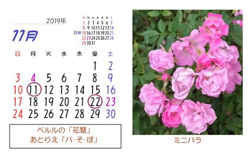 2019月11月 花暦