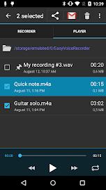 Easy Voice Recorder Pro Screenshot 3
