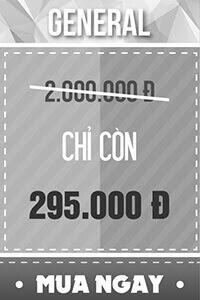 Vé GENERAL - 295,000 đ