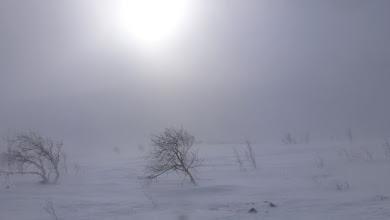 Photo: Snowing