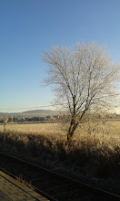 Photo: it is getting frosty ...................  wishing everyone a nice week ahead :D