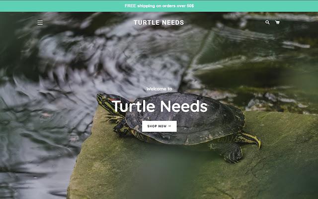 Turtle Needs