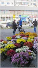 Photo: Turda - Str. Tineretului, piata stradala ocazionala - 2018.10.29