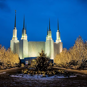 Mormon Temple by Stephen Majchrzak - Buildings & Architecture Places of Worship