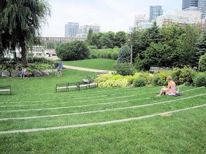 Photo: Toronto Music Garden
