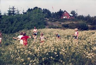 Photo: Fotballkamp i høgt gress på Håkholmen