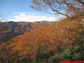 Photo: IMG_3970 i colori dell autunno sull appennino reggiano dal 607