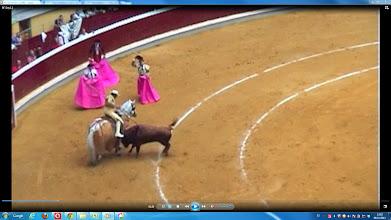 Photo: El cráneo del toro impacta con el estribo.