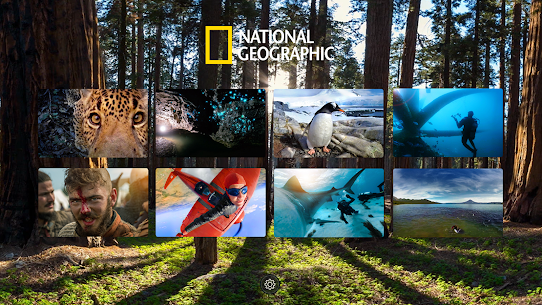 National Geographic VR 2