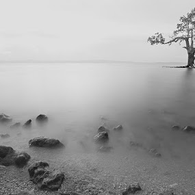 Silk by Hector Quiambao - Landscapes Waterscapes