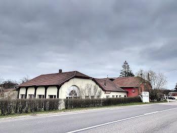 locaux professionnels à Combeaufontaine (70)