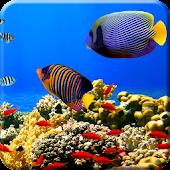 Free Aquarium Undersea LWP PRO