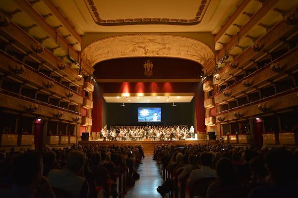 Il concerto composto di Ilaria Bertini