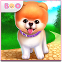 Boo - The World's Cutest Dog icon