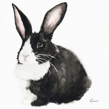 """黑白兔水彩畫 8""""x10"""" 絨面相紙"""