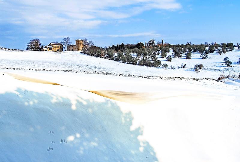 Impronte sulla neve di Tacca