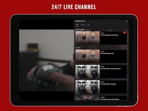 UFC screenshot 11