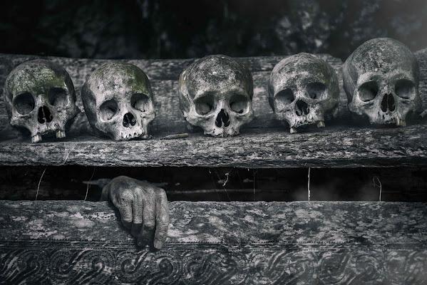 The Awakening di Roberto Pazzi Photography