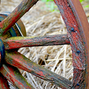Wagon Wheel Spokes by Dave Feldkamp - Artistic Objects Antiques ( wheel, wagon wheel, wagon,  )
