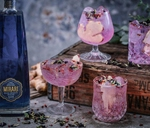 Gin Tasting : Time Anchor Distillery