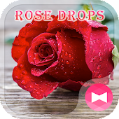 Beautiful Wallpaper Rose Drops Theme