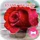 Beautiful Wallpaper Rose Drops Theme Download on Windows