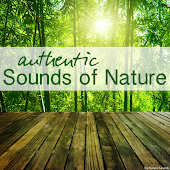 Authentic Sounds of Nature
