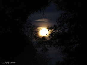 Photo: February 7, 2012 - Moon #creative366project