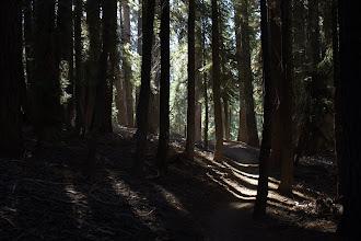 Photo: High Sierra Trail