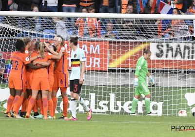 Dappere Flames kunnen met opgeheven hoofd terug naar België