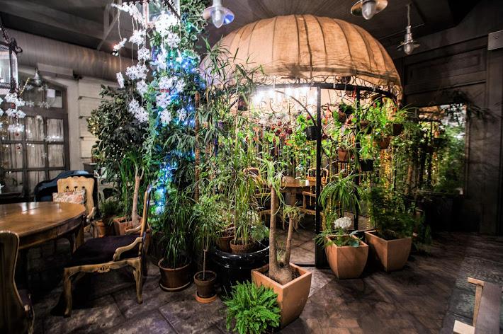 Фото №9 зала Зал «Оранжерея»