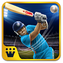 Power Cricket T20 Cup 2016 icon