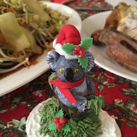Christmas Koala by Dawn Simpson - Public Holidays Christmas ( native animals, koala, festivities, christmas, dinner )